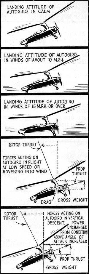 autogiro landing attitude
